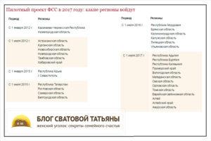 13 регионов РФ подключились к пилотному проекту ФСС