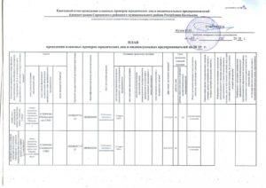 План проверок юридических лиц на 2019 год