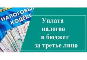 Как учредителю заплатить налоги за ООО (за третьих лиц)