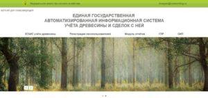 ЛесГАИС: как ИП, организации и физлицу купить древесину
