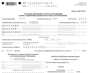 Декларация по УСН за 2018 год для ИП: бланк и образцы в 2019 году