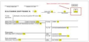 Какой статус составителя у ИП должен быть указан в платежных поручениях?