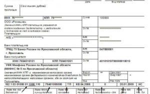 Статус ИП при перечислении НДС в бюджет