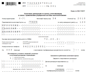 Образец заполнения нулевой декларации по УСН за 2016 год