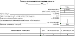 Отчет о целевом использовании средств в 2016 году