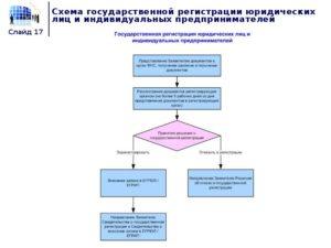 Порядок регистрации юридического лица и индивидуального предпринимателя