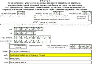Для страхователей утверждены два новых отчета в ФСС