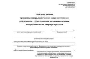 Типовой трудовой договор для ИП и микропредприятий