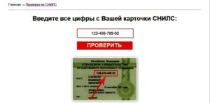 ПФР просит не вводить номера СНИЛС в интернете