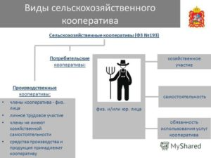 Какие плюсы и минусы, при переводе сельскохозяйственного производственного кооператива в КФХ?