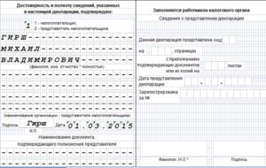Заполнение титульного листа декларации по УСН предпринимателем