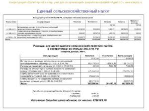 Вправе ли учитывать при расчете ЕСХН, рекламные расходы?