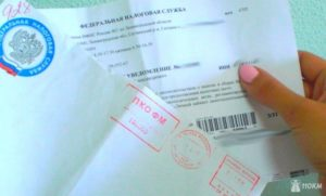 Пришло письмо из ИФНС: что делать бухгалтеру?