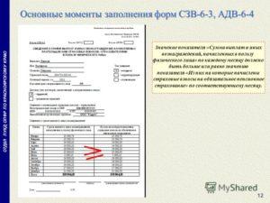 Специалисты ПФР разъяснили нюансы заполнения формы СЗВ-6-3