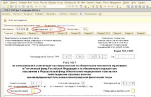 Причина уточнения в РСВ-1 расшифровка