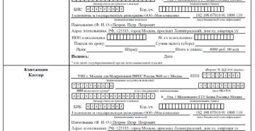 Как платить госпошлину, если одну фирму регистрируют несколько учредителей