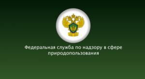 К 15 января Росприроднадзор ждет от малого бизнеса отчет об отходах (штраф 250 000 рублей)