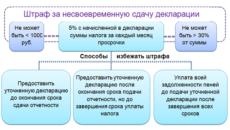 Штраф за несвоевременное представление декларации по ЕНВД
