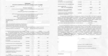 Требование Пенсионного фонда об уплате недоимки по страховым взносам